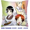 Axis Powers Hetalia double sides pillow BZ2674