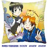 Axis Powers Hetalia double sides pillow BZ2676