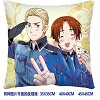 Axis Powers Hetalia double sides pillow BZ2677