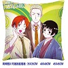 Axis Powers Hetalia double sides pillow BZ2681