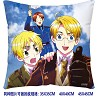 Axis Powers Hetalia double sides pillow BZ2683