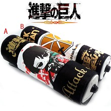 Attack on Titan pen bags(2pcs a set)