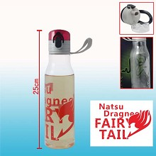 Fairy Tail kettle