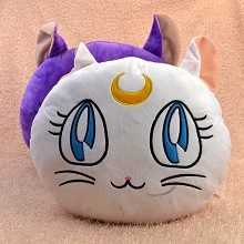 Sailor Moon anime pillow