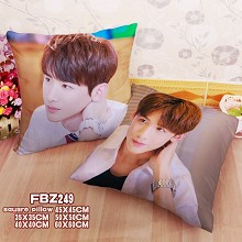 Star Baijingting two-sided pillow