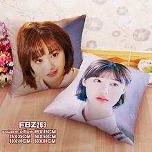 Star Zheng Shuang two-sided pillow